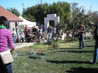 Organic Farm1